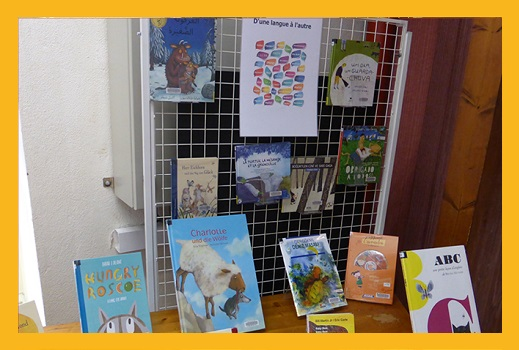 Bibliothèques : publics migrants en secteur jeunesse et fonds en langues d'origine